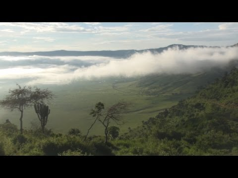 Entering the Ngorongoro Crater on Safari - Africa