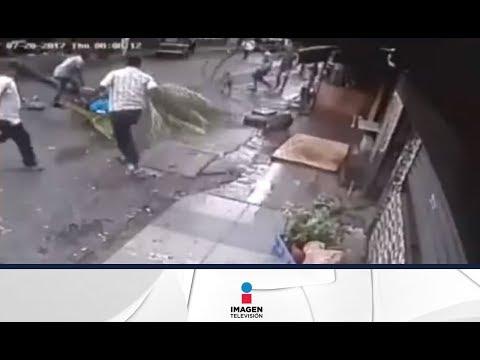 ¡Insólito accidente! Palmera mata a conductora de televisión   Imagen Noticias con Yuriria Sierra