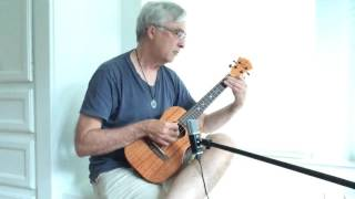 """Bear Dance"" - Kenneth Fowler ukulele"