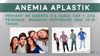 Story about Anemia Aplastic Survivor - Karya Ferry Irwandi.