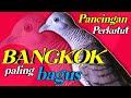 Perkutut Bangkok Gacor Jitu Untuk Pancingan  Mp3 - Mp4 Download