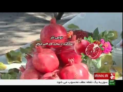 Iran Organic Pomegranate harvest, Qom province برداشت انار استان قم ايران