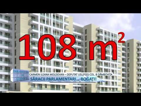 CARMEN ILEANA MOLDOVAN - MDI TV