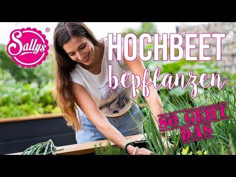 Hochbeet bepflanzen: so geht das / Tipps & Tricks / Sallys Welt