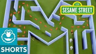 Sesame Street: Letter M is for Maze