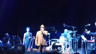 Wild Night - Van Morrison. Forest Hills Stadium, Queens. NY. June 19, 2015.