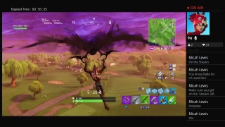road to 40 subs Epic plays roleplaying
