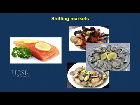 Food from the Sea Summit: Part IV