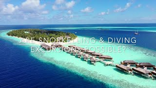 Maldives Diving & Snorkeling -  FAQ For Covid-19 Travel, Vilamendhoo Island Resort & Spa
