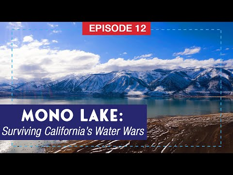 Mono Lake: Surviving California's Water Wars