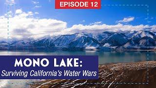 The Story of Mono Lake: Surviving California