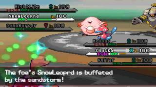 PokeMoshPit Battle #311:  TheFlamingSpade vs FurretFan450 [Rotation]