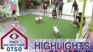 Teen Housemates, nakipaghabulan sa mga baby pigs sa pool | Day 21 | PBB OTSO