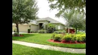 5416 Pagnotta Place, Lutz, FL  33558 - Real Estate for Sale $349,000