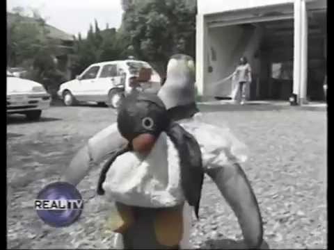 La La The Japanese Penguin Goes To The Fish Market
