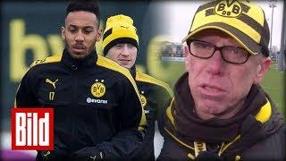 Peter Stöger macht Aubameyang Mut nach Suspendierung - Stress bei Borussia Dortmund