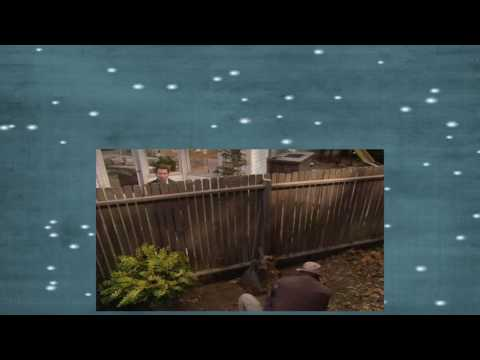Home Improvement S01E05 Wild Kingdom