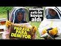 Sattığı Bileziğiyle Bir Kovan Arı Aldı, Şimdi Paraya Para Demiyor
