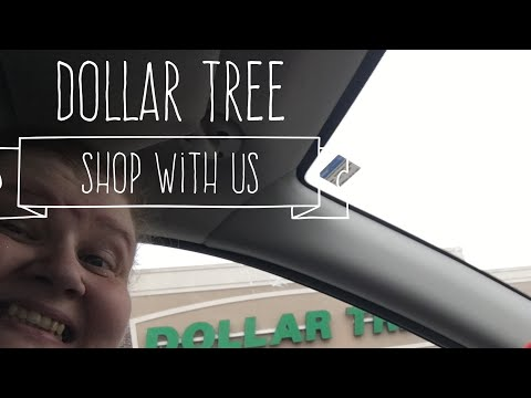 Dollar Tree Shop With Us November 3, 2017