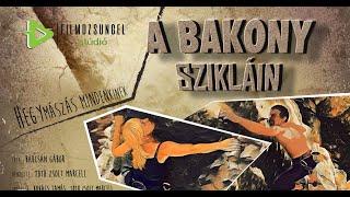 A Bakony sziklán, hegymászás mindenkinek!