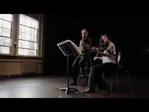 Viola Spaces Duos no 7 - quartertones
