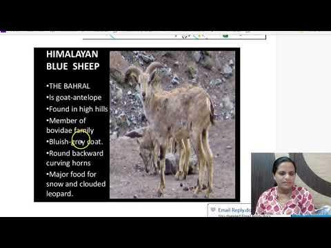 19 April 2018 - Daily The Hindu Current Affairs IAS 2018 - Mrs. Bilquees Khatri