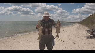 Рыбалка 2020 Украина Ловим пеленгаса за городом