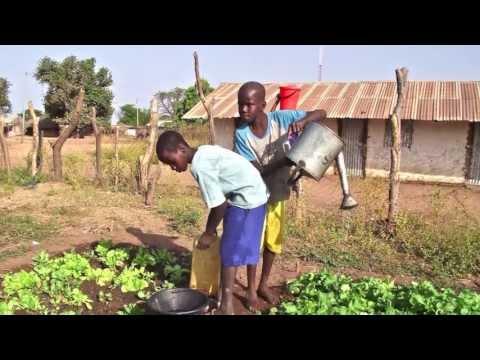 Soil atlas of Africa