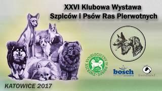 XXVI Klubowa Wystawa Szpiców i Psów Ras Pierwotnych