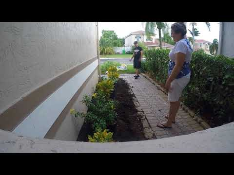 Small Landscaping Project – South Florida