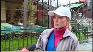 Орнитологи Екатеринбурга умоляют горожан не…