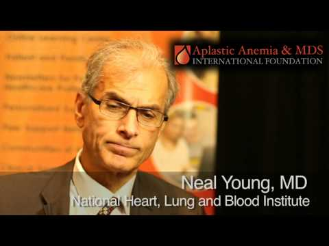 ASH 2013: Update On Improving Care for Aplastic Anemia Patients