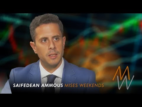 Saifedean Ammous on Bitcoin Hype