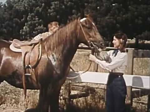 The Cisco Kid - Quarter Horse, Full Length Episode, Classic Western TV show