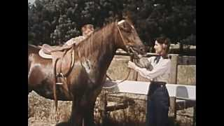 The Cisco Kid - Quarter Horse, Full Length Episode, Classic Western TV show