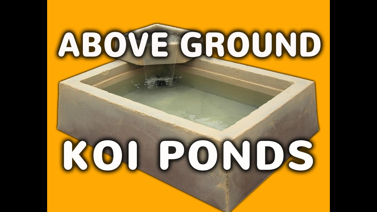 Above Ground Pond Easy Outdoor Or Indoor Above Ground