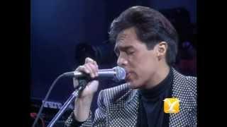 Los Temerarios, Ven Porque Te Necesito, Festival de Viña 1993