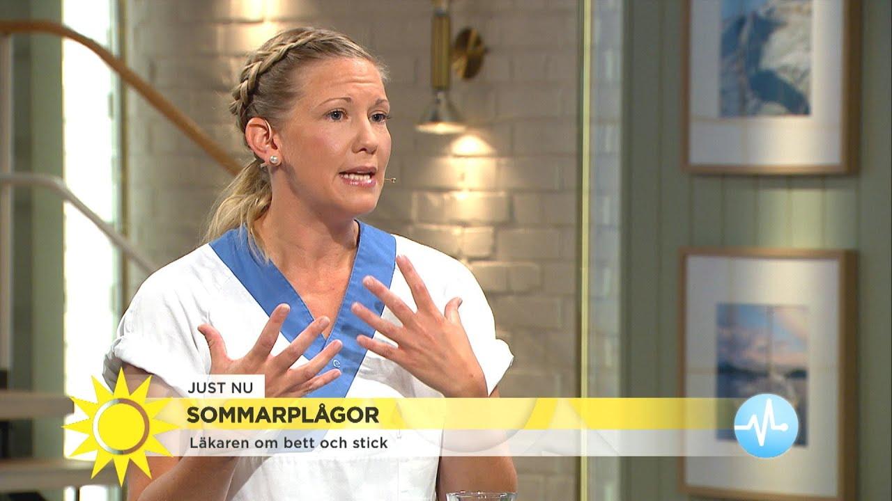 Läkarens alla tips för insektsbett – och när det är farligt  - Nyhetsmorgon (TV4)