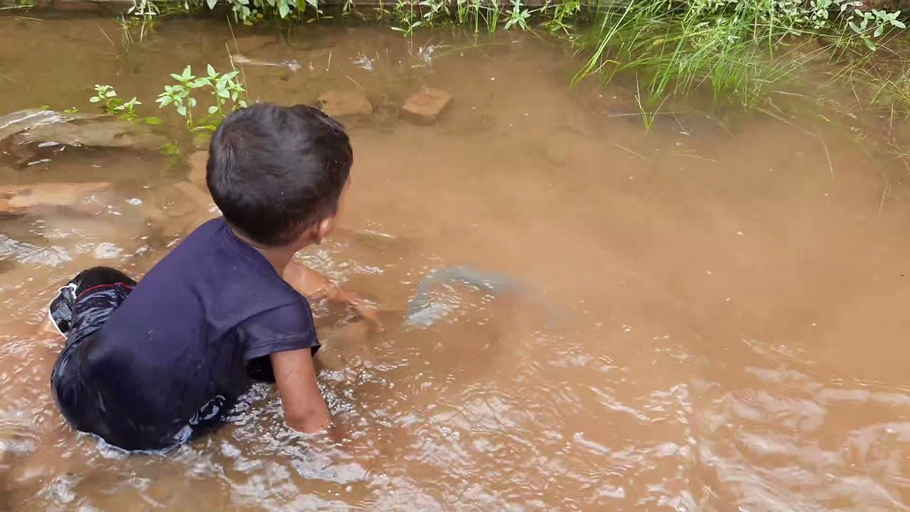 Download My Boy Catch Big Fish | Traditional Boy Catching Fish By Hand in Pond Water
