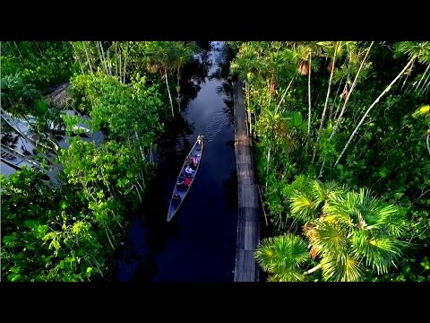Travel to the Amazon Rainforest. Discover the Sacha Lodge.