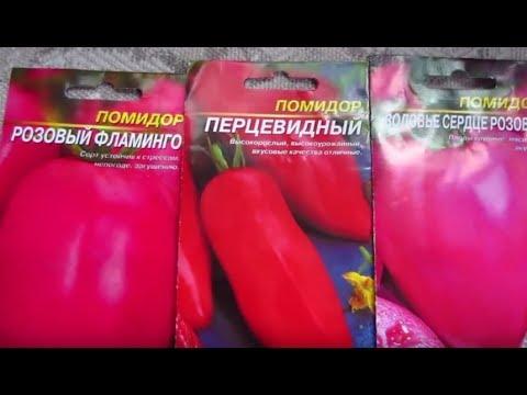 Безрассадный способ выращивания томатов ! (1 часть) Посев семян томатов в открытый грунт !