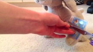 Cutting The Tag Off Of My Weimaraner