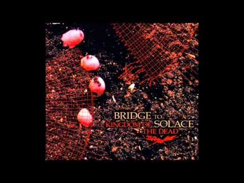 Bridge To Solace - In Search Of