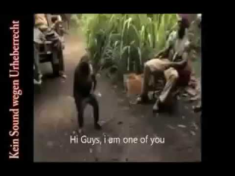 Ape Infiltrates and Crushes African Communist Guerilla