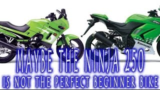 Maybe The Ninja 250 Is Not The Perfect Beginner Bike