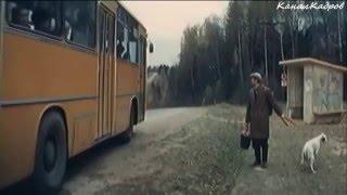 Ikarus-260, автобус из к/ф