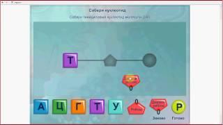 ДНК и РНК. Подготовка к ЕГЭ и ОГЭ по биологии