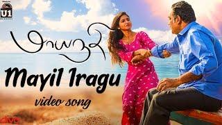 Maayanadhi - Mayil Iragu (Video Song) | Abi Saravanan, Venba | Ashok Thiagarajan | Raja Bhavatharini