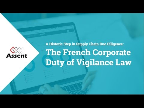 [Webinar] A Historic Step in Supply Chain Due Diligence: The French Duty of Vigilance Law