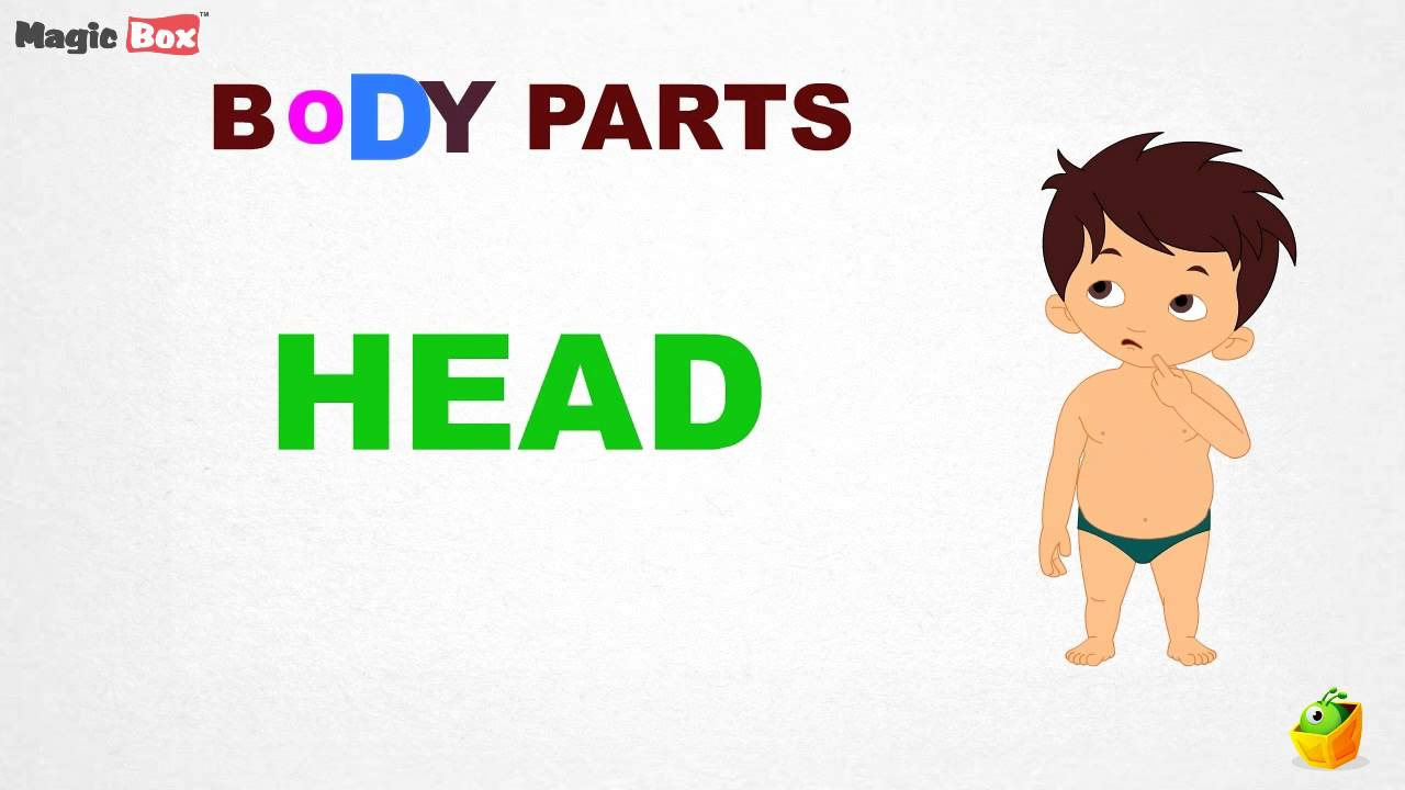 Worksheet Child Spelling body parts intro pre school learn spelling videos for kids